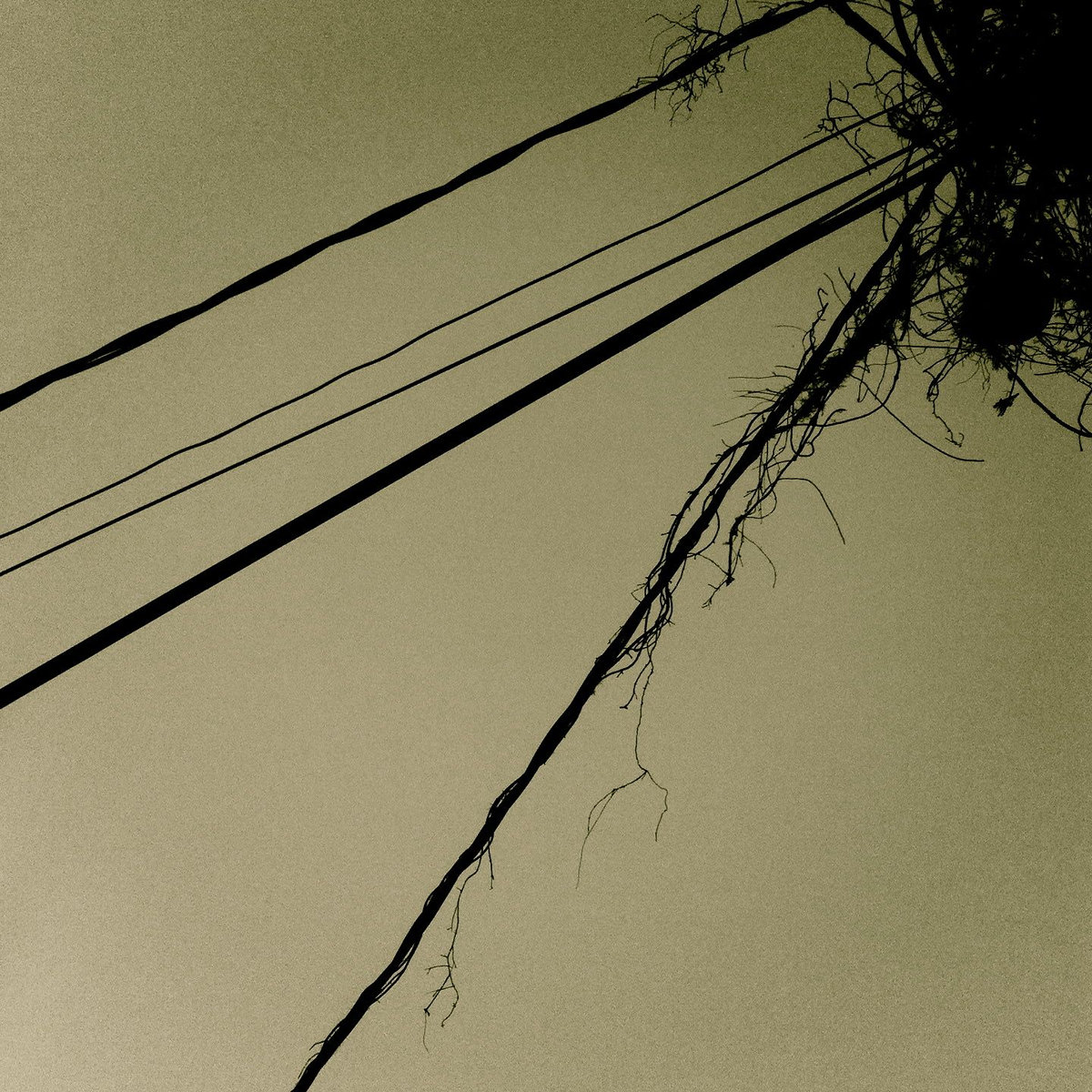 unknown - Waiting Room (2013) ambient/electronic