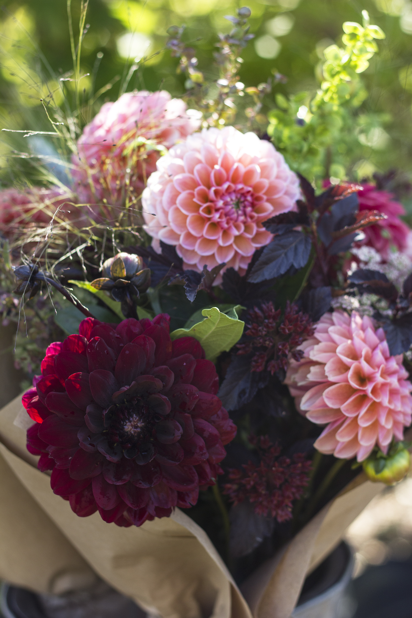 reduced_ss_dahlia_bouquet_for_sale_Karma_chocolate_lindas_baby_cress_frosted_explosion.jpg
