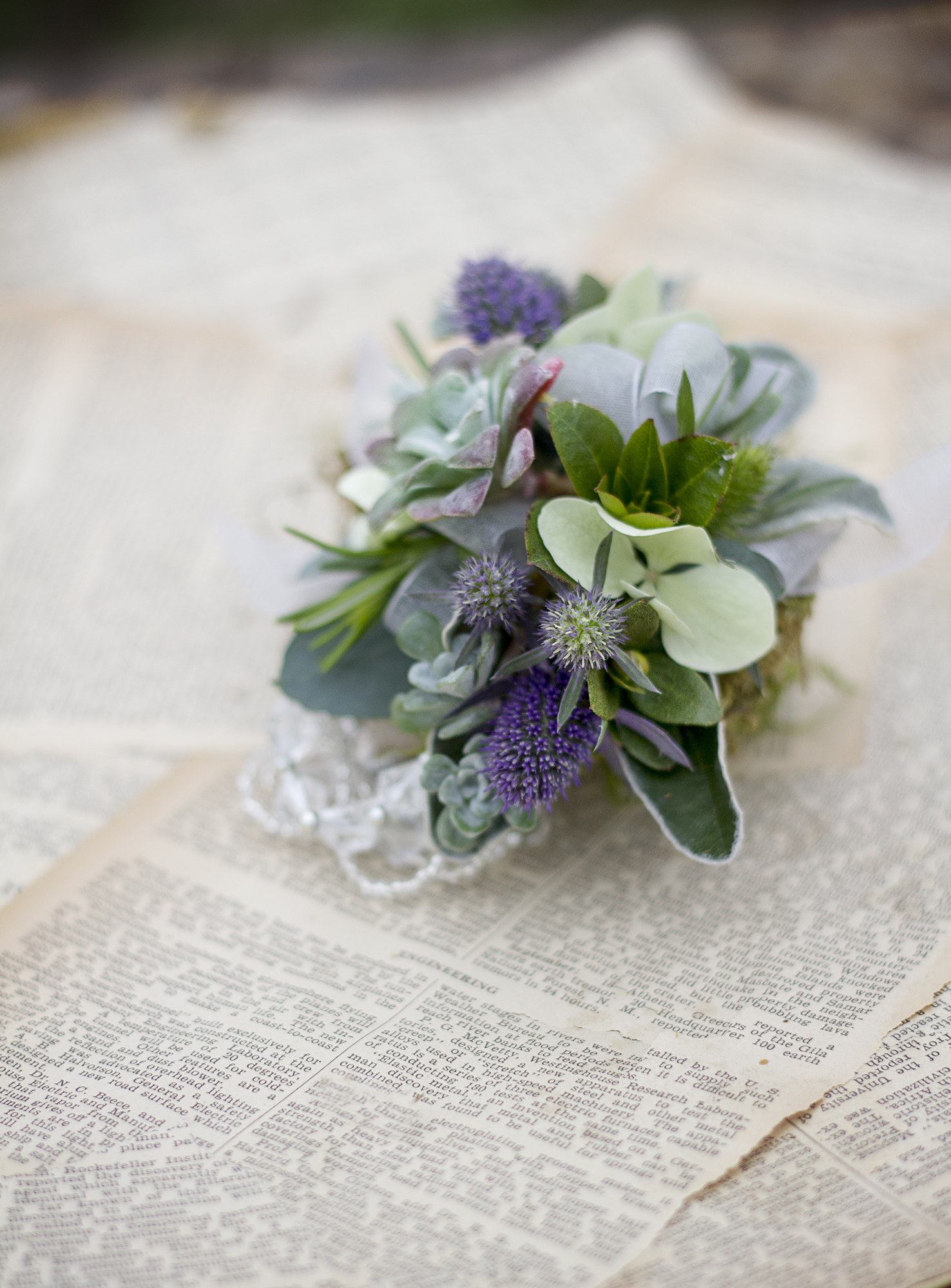 reduced_ss_corsage_succulent_sea_holly_homecoming.jpg