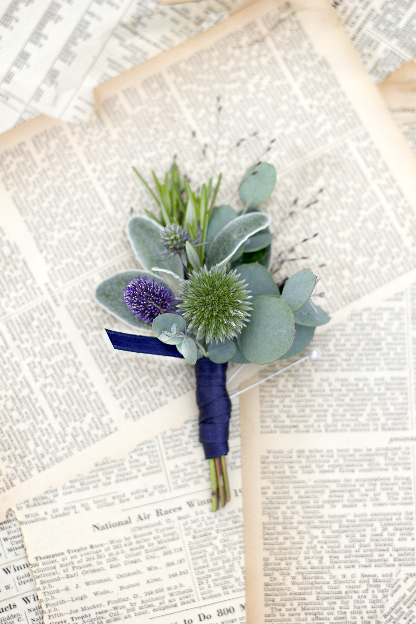 reduced_ss_echinops_sea_holly_frosted_explosion_grass_homecoming.jpg
