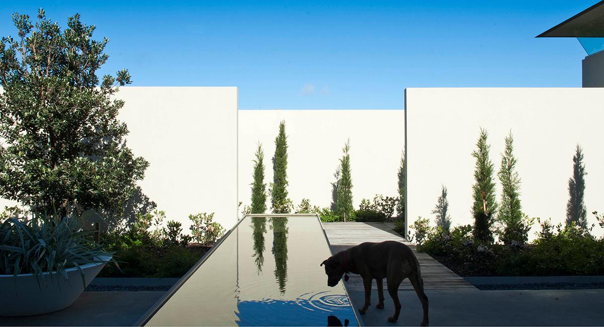 local_Landscape_Architecture_Residental_Reflection.jpg