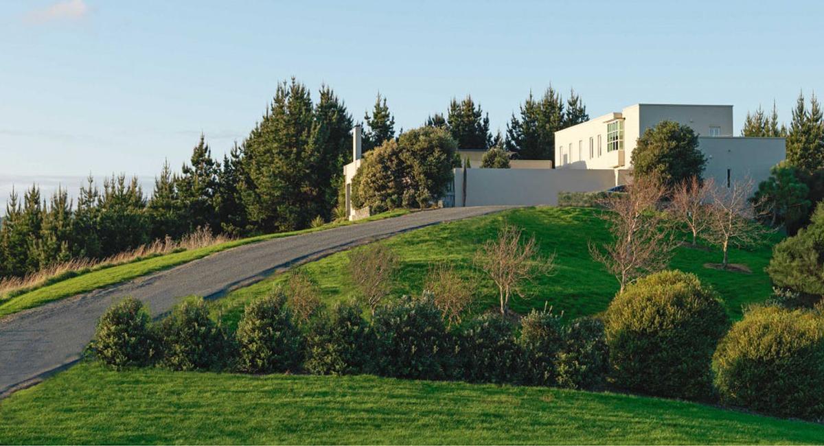 local_Landscape_Architecture_Residental_Reflection_Garden.jpg