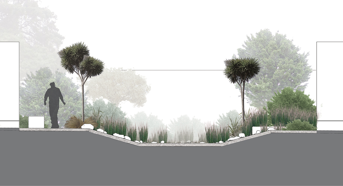 local_Landscape_Architecture_Ecological_Raingarden.jpg