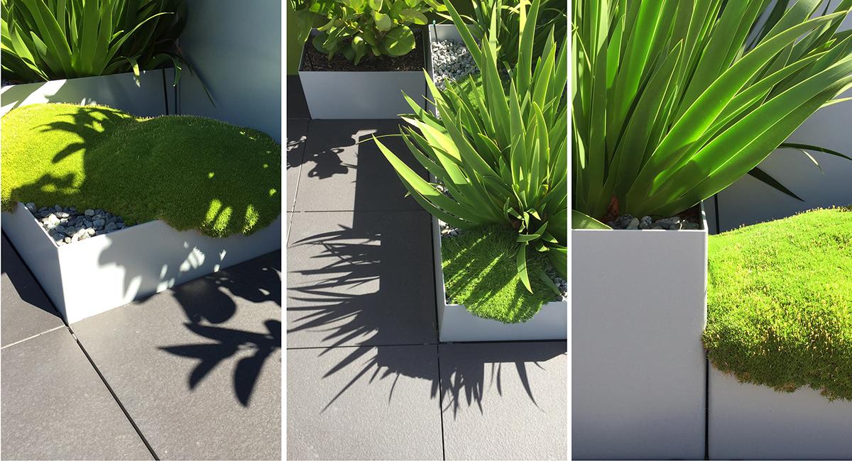 local_Landscape_Architecture_Residental_Detail.jpg