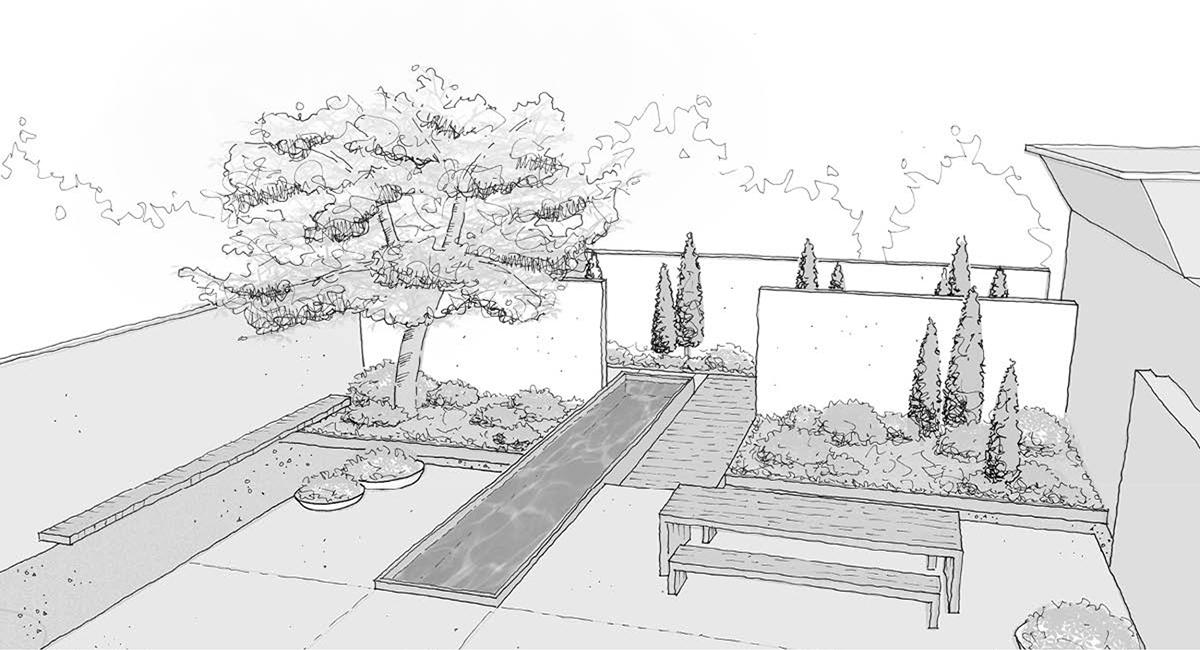 local_Landscape_Architecture_Residental_Pond.jpg