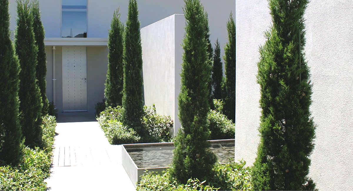 local_Landscape_Architecture_Residental_MNLA.jpg