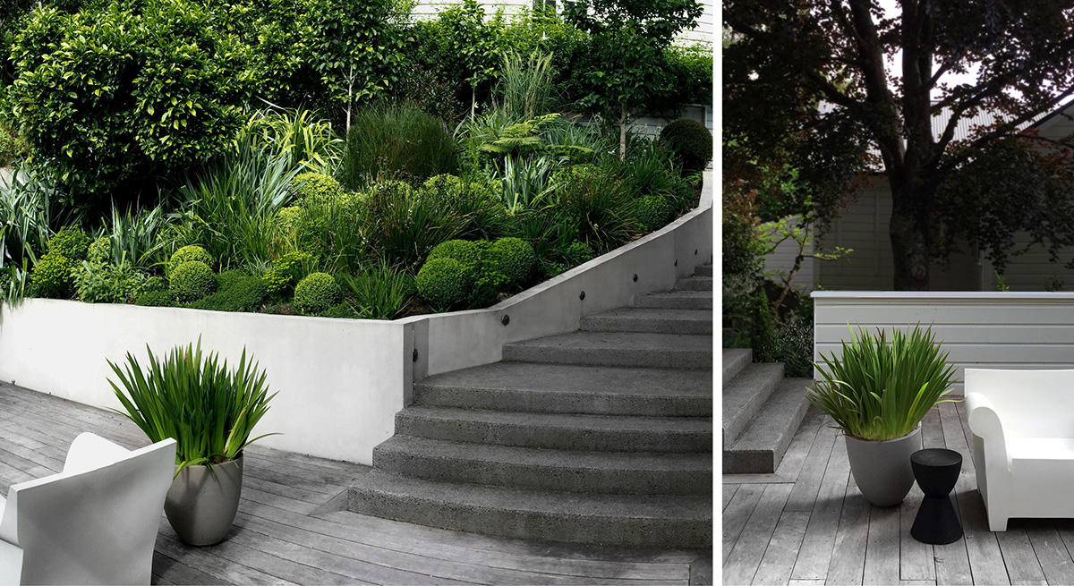 Local_landscape_architects_residential_buxus.jpg