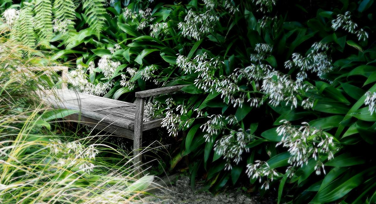 local_Landscape_Architecture_Kelburn_Garden_Seat.jpg