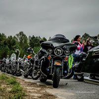 Staged Motorcycles.jpg