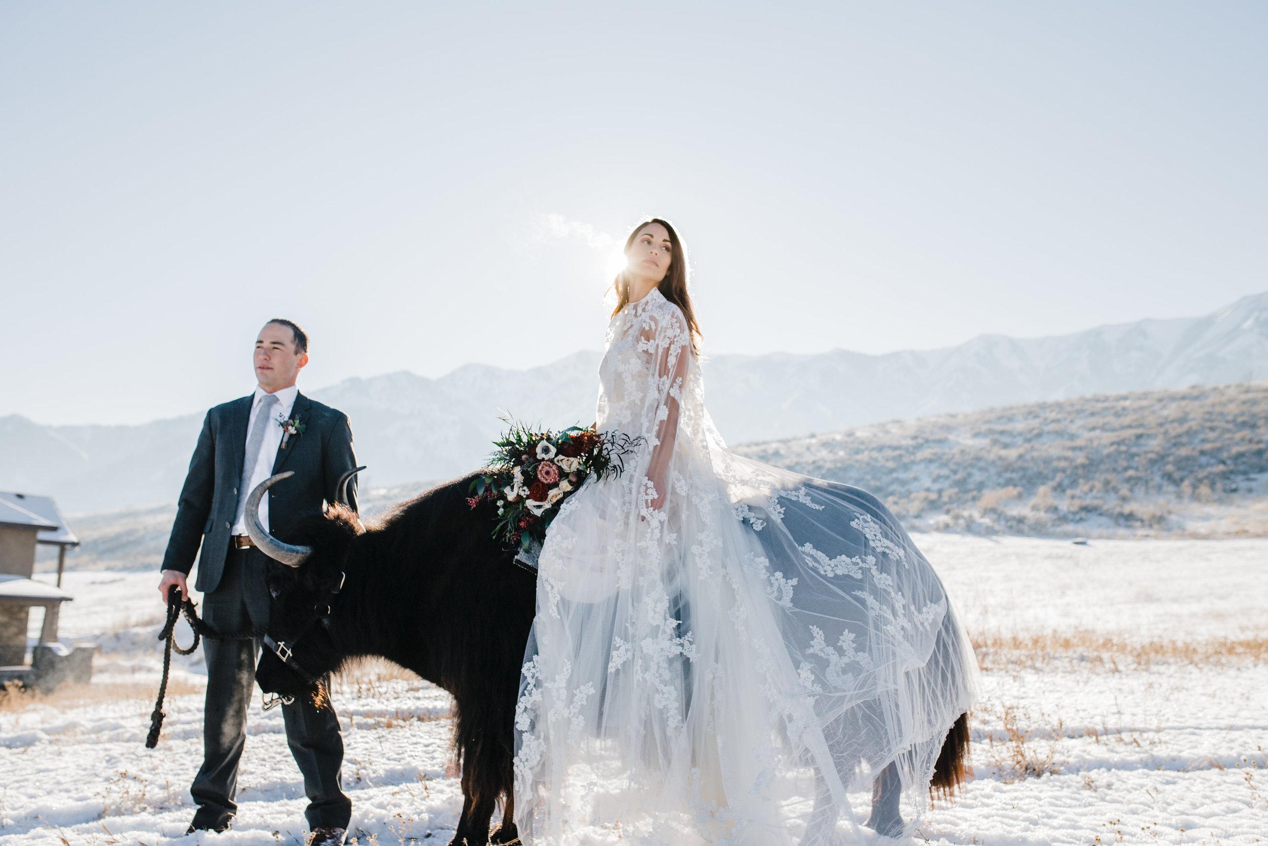 winter wedding photography yak logan utah