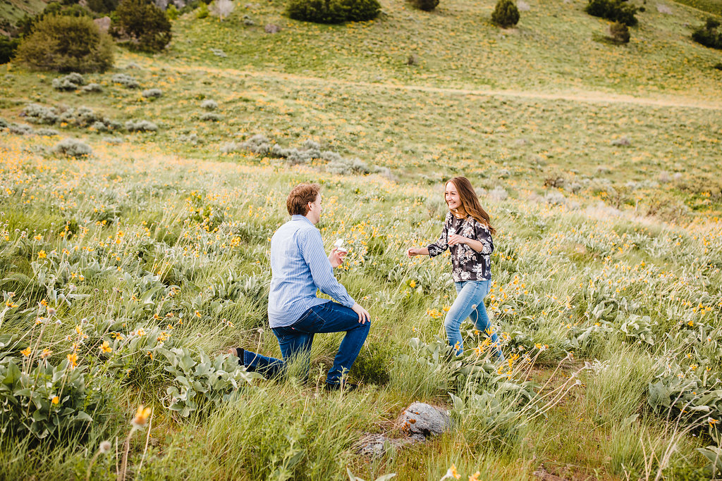 surprise proposal during couples photography session engagement photographer logan utah surprise engagement proposal photo shoot