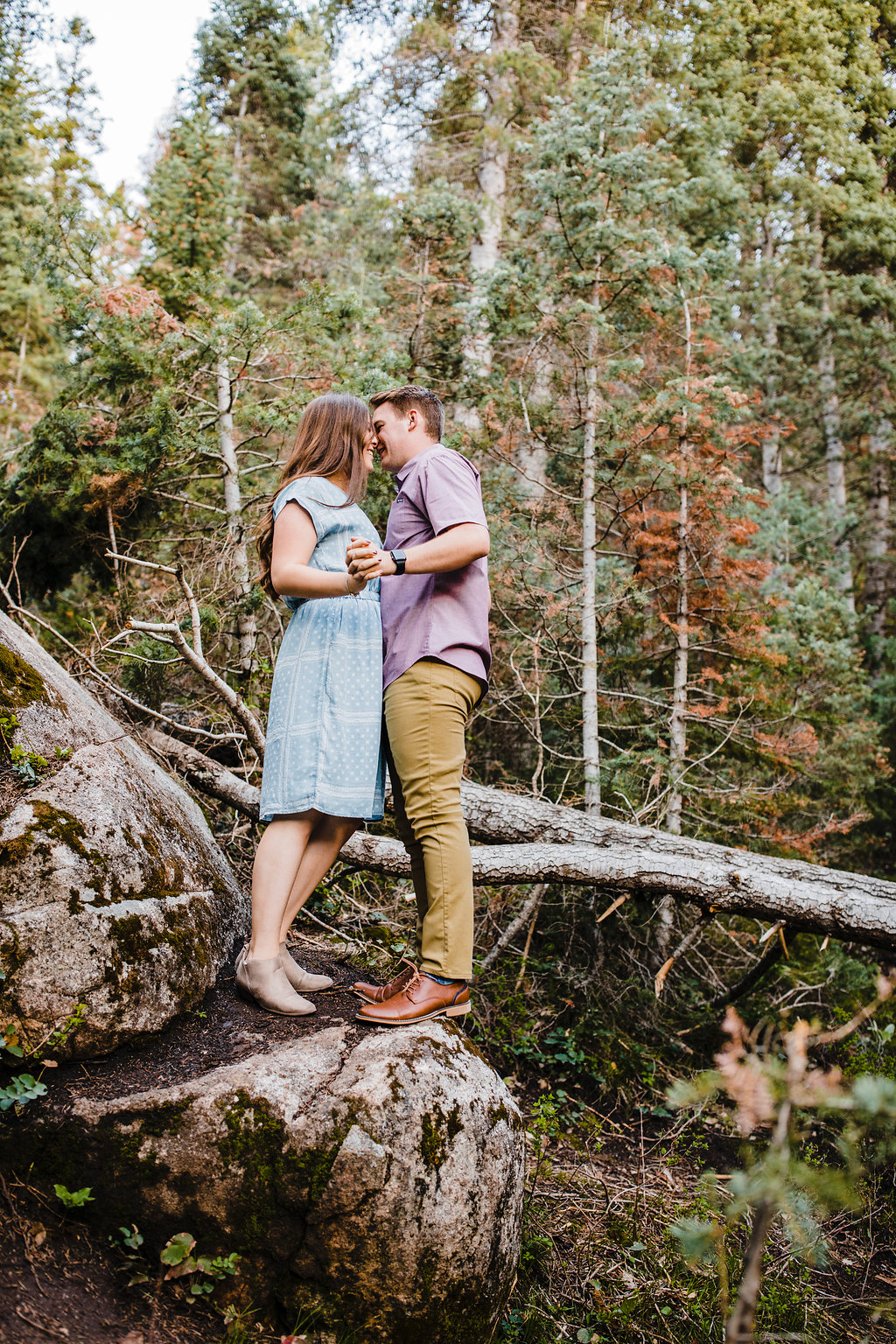 engagement photography in a forest near a lake northern utah cache valley engagement photographer calli richards