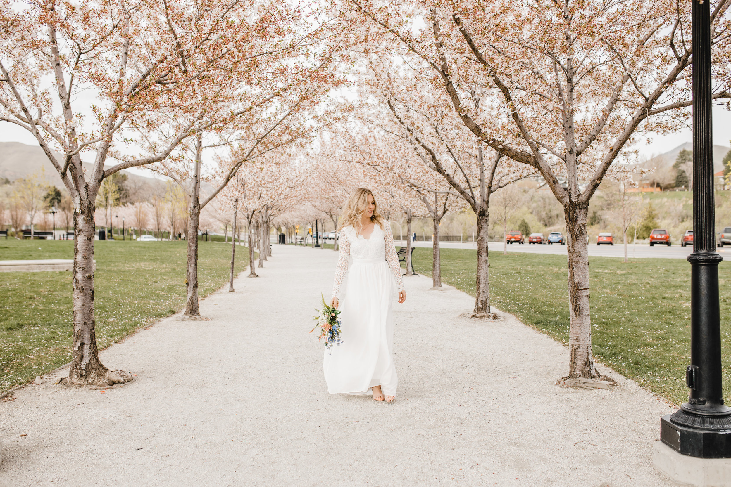 Professional wedding photographer in cache valley utah spring wedding lace wedding dress bridal photographer