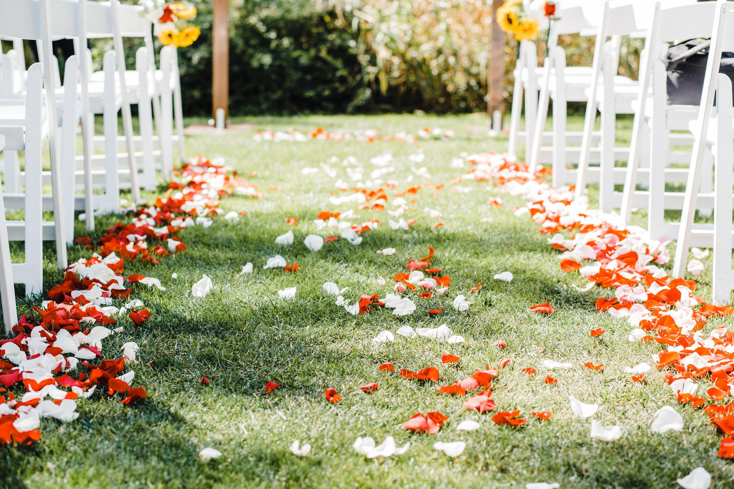 olympia washington professional wedding photographer wedding isle rose petals outdoor ceremony