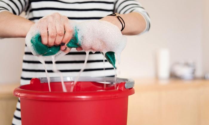 bliz cleaning services  (12).jpg