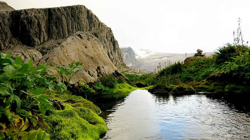 Kva som er vakkert i oasen ved Vasskarvatnet, spørst om det er journalisten eller geologen som ser.