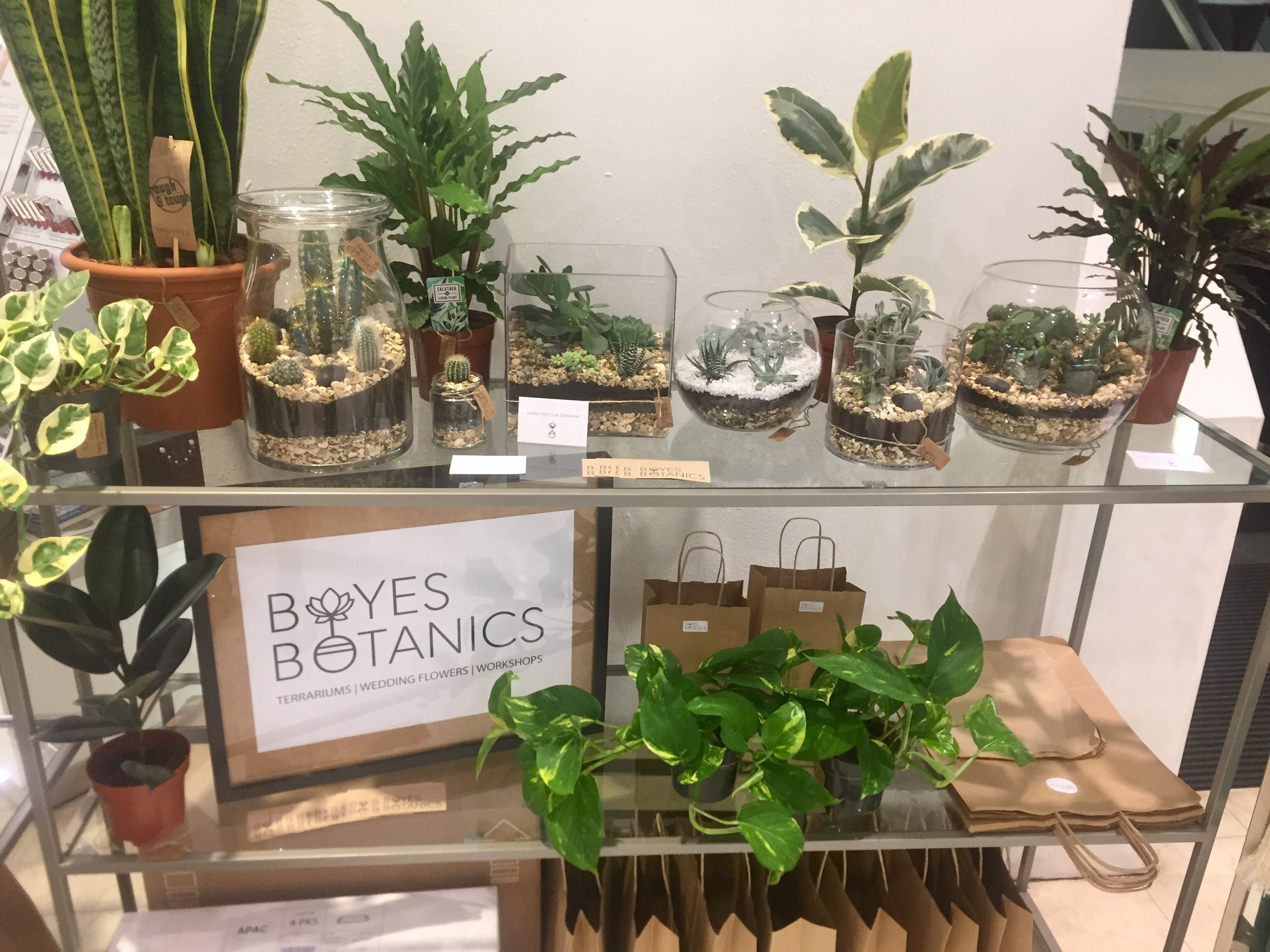 FOLIAGE FOR YOUR HOME - There was a selection of hand made terrariums in various sizes and low maintenance house plants available to purchase. As well as macrame plant hangers to hang your plant, these were big in the 60's and have been making a come back!