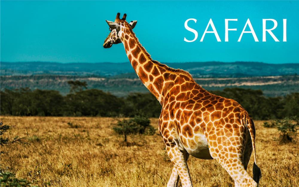 Safari_home.png