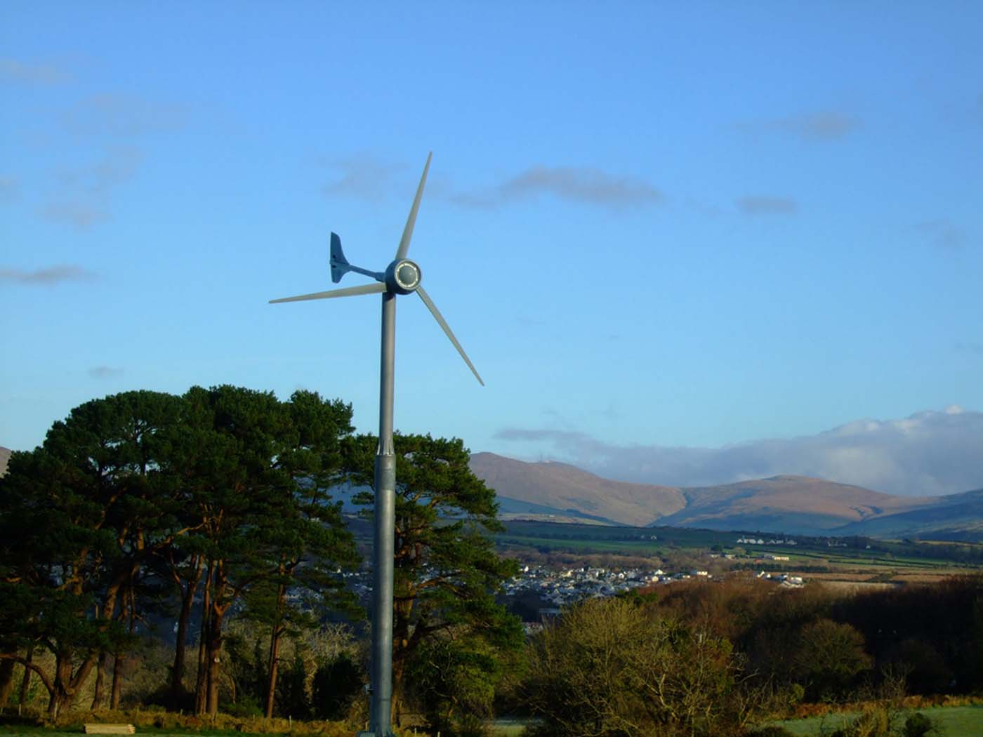 Renewables (4).jpg