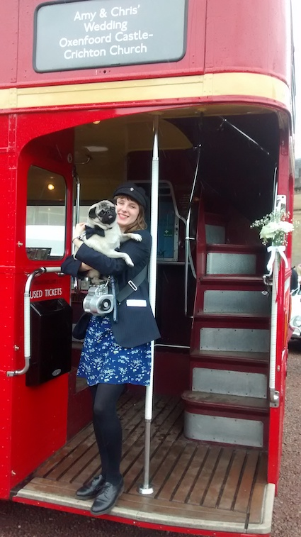the red bus conductor pug.jpg