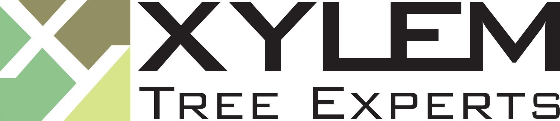 XylemHiResLogo.JPG