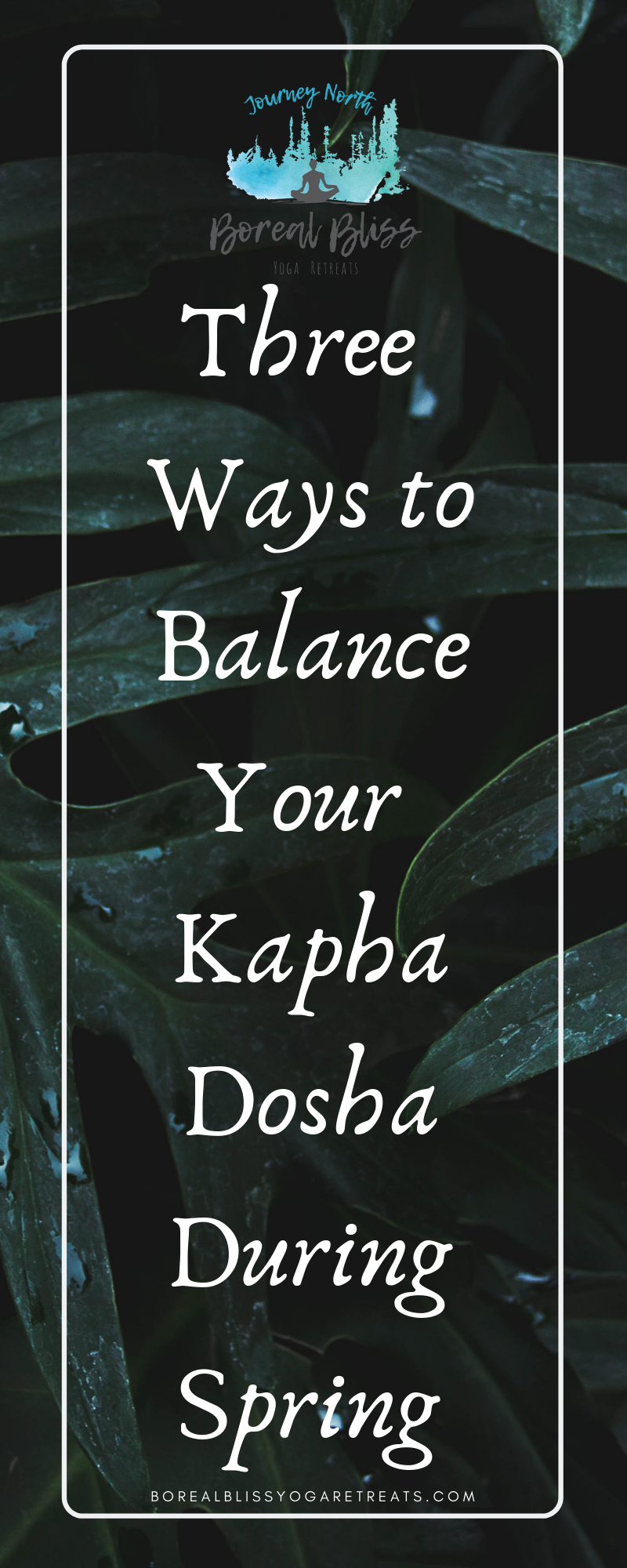 Copy of 3 ways to Embrace Kapha!.png