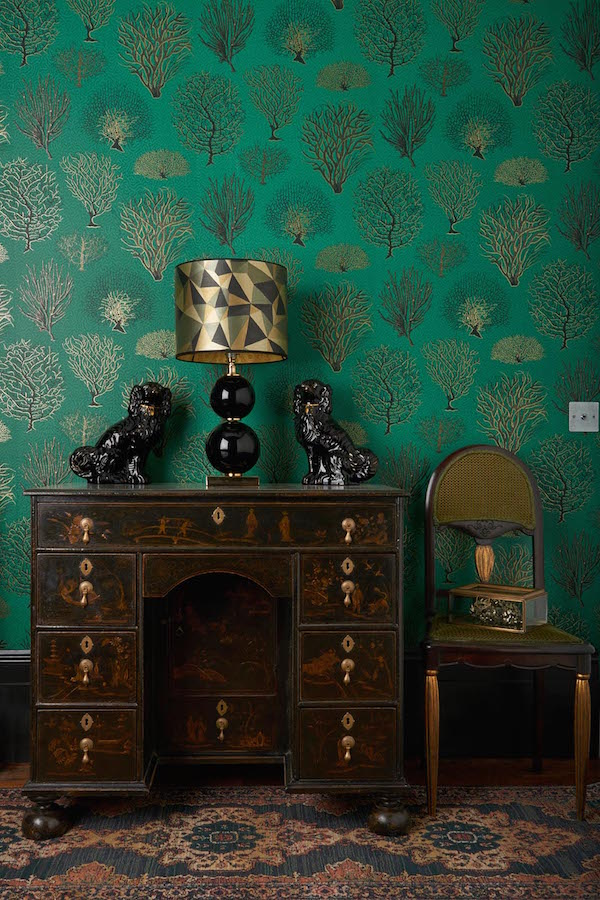 Seafern, Curio collection, Cole & Son –£80 per roll
