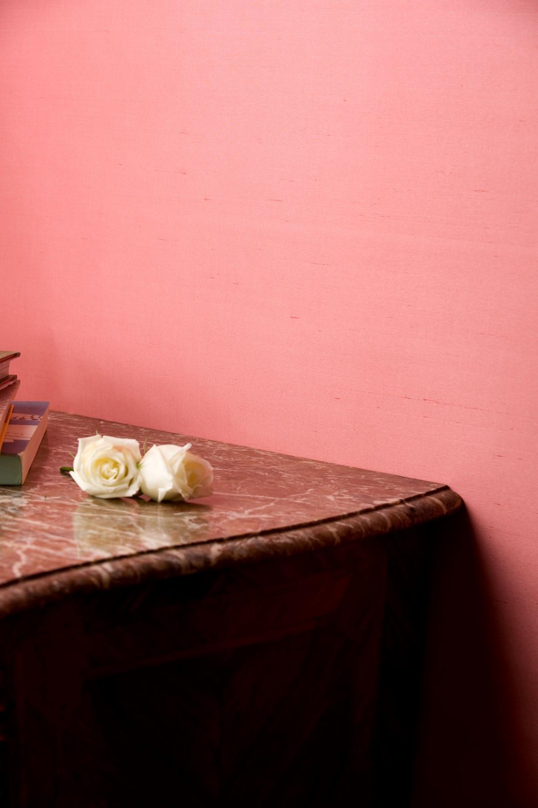 Paper Backed Raspberry Slub Silk by de Gournay