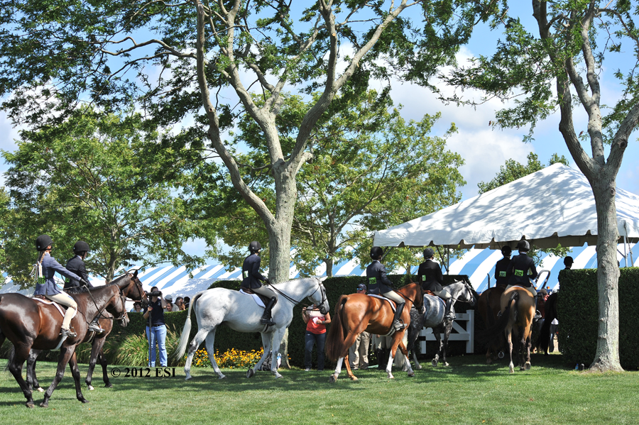 horse-year-show-hampton-classic.png