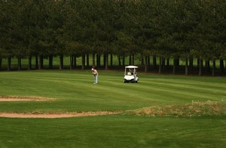 pinecrest golf1.jpg