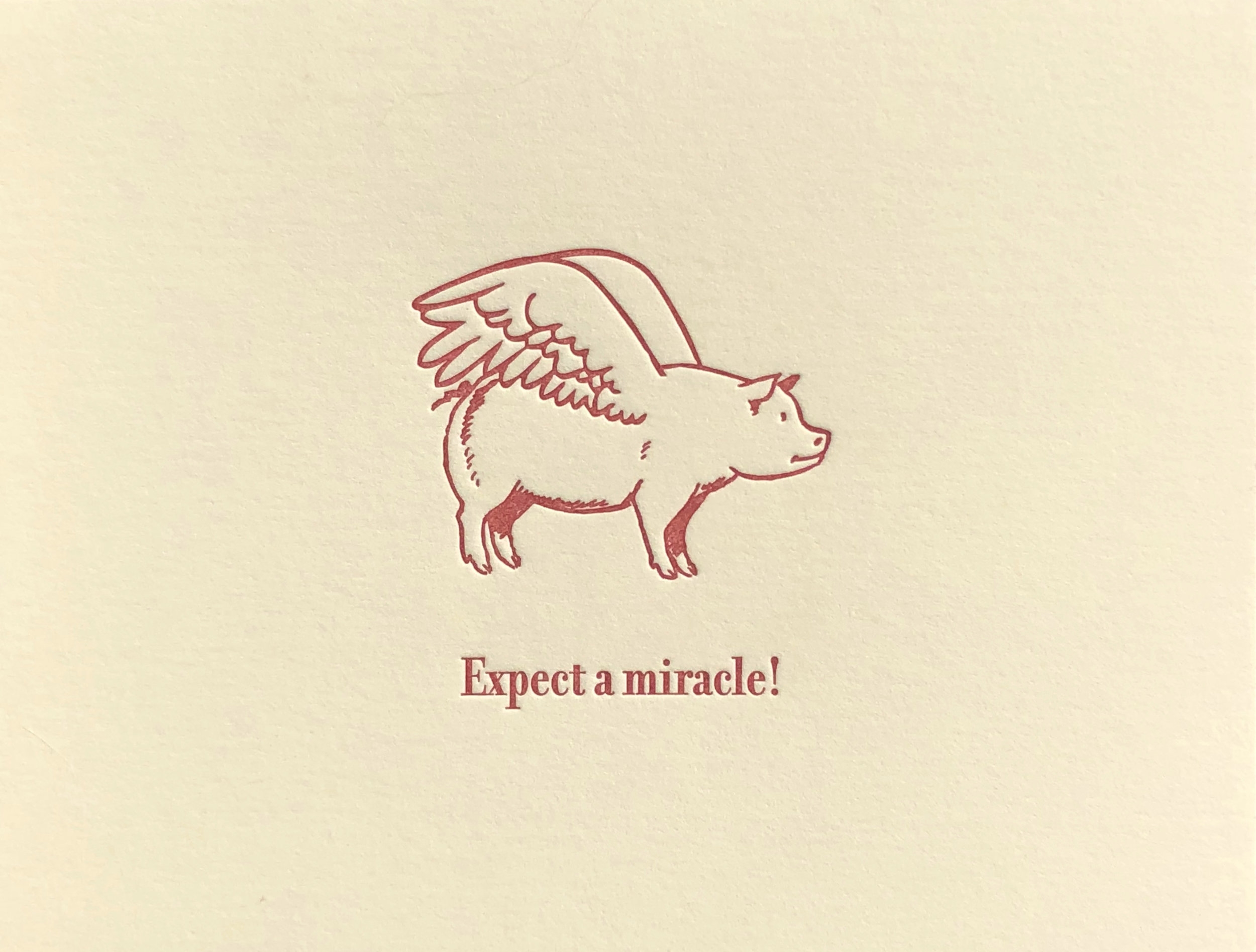 Expect a miracle! (Blank Inside)