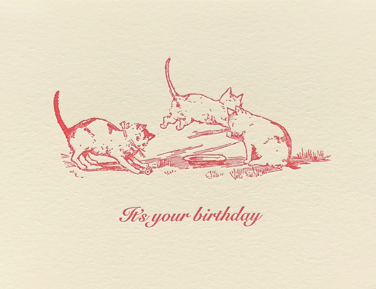 It's your birthday (Inside greeting: Lap it up!)