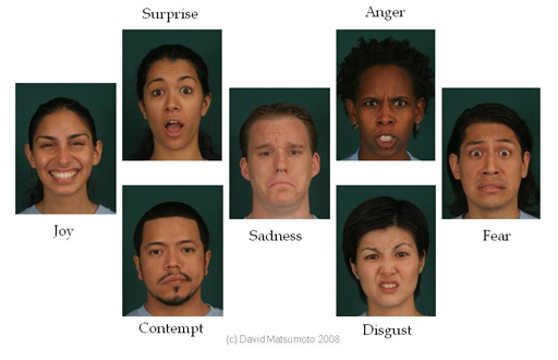 Source: http://www.apa.org/science/about/psa/2011/05/facial-expressions.aspx