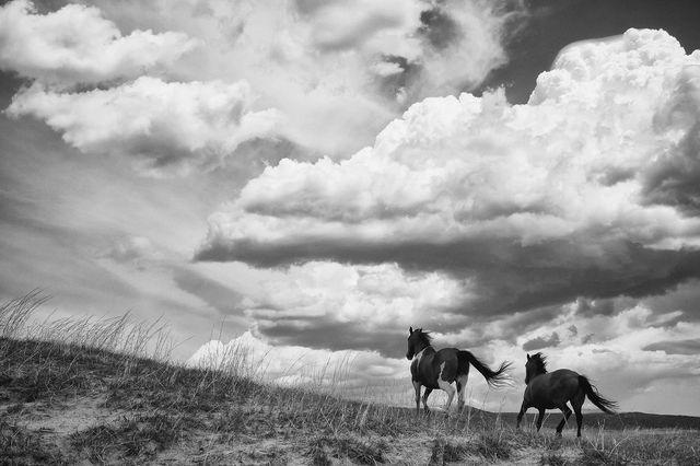 Photographer: Brett L. Erickson