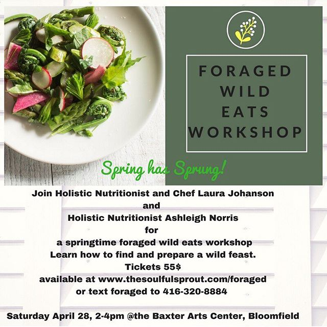 Spring has sprung! Join nutritionists Ashleigh and Laura for a wild foraged eats workshop. Learn how to find and prepare nutritious wild foods. Save your spot. #wild #wildforaging #foragedfood #pec #princeedwardcounty #holistichealth #holisticnutrition #sprucetips #fiddleheads #ramps #countylife