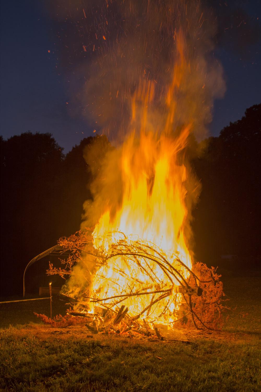 Bonfire (5).jpg