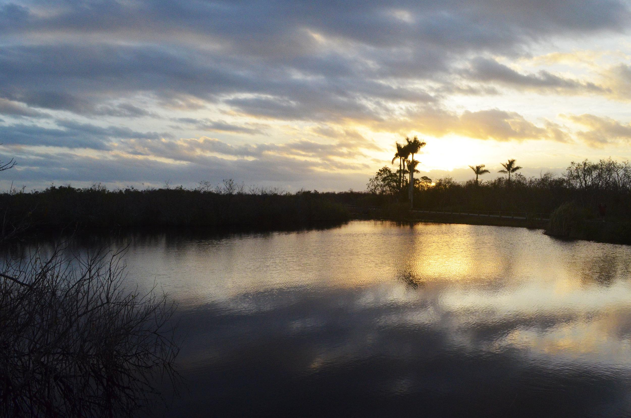 Sunrise at Anhinga Trail