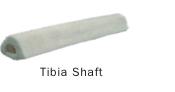 tibiashaft1.jpg
