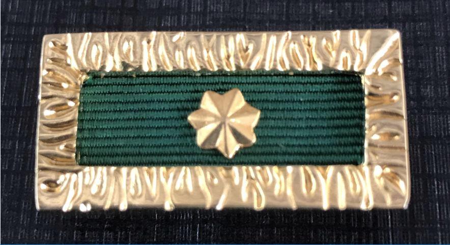 Mick Kurtz' Unit Citation Gallantry Badge.