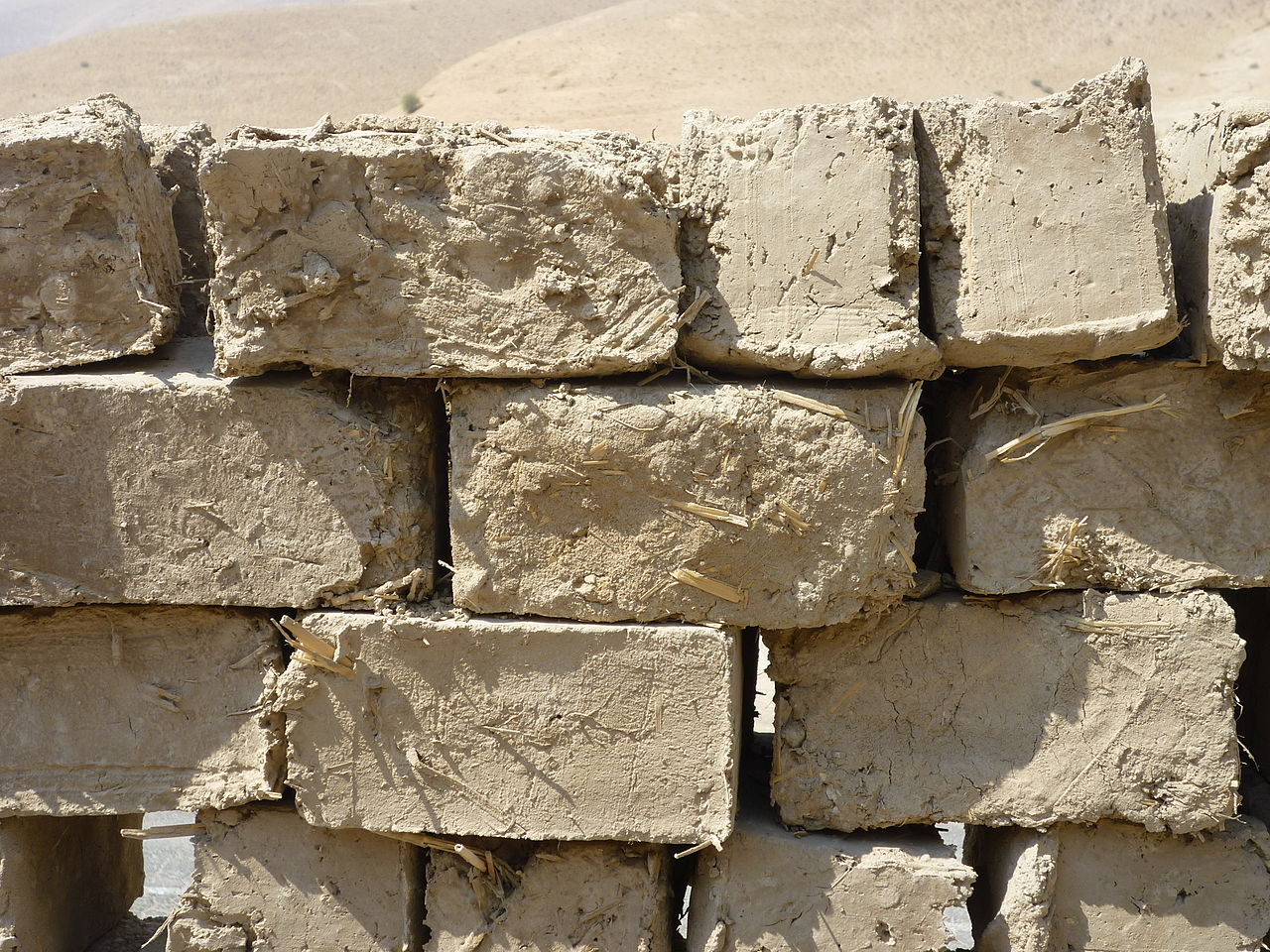 Modern Mud Bricks
