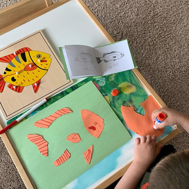 Fish nomenclature and pin punching project #montessori #preschool #earlychildhoodeducation #calgary