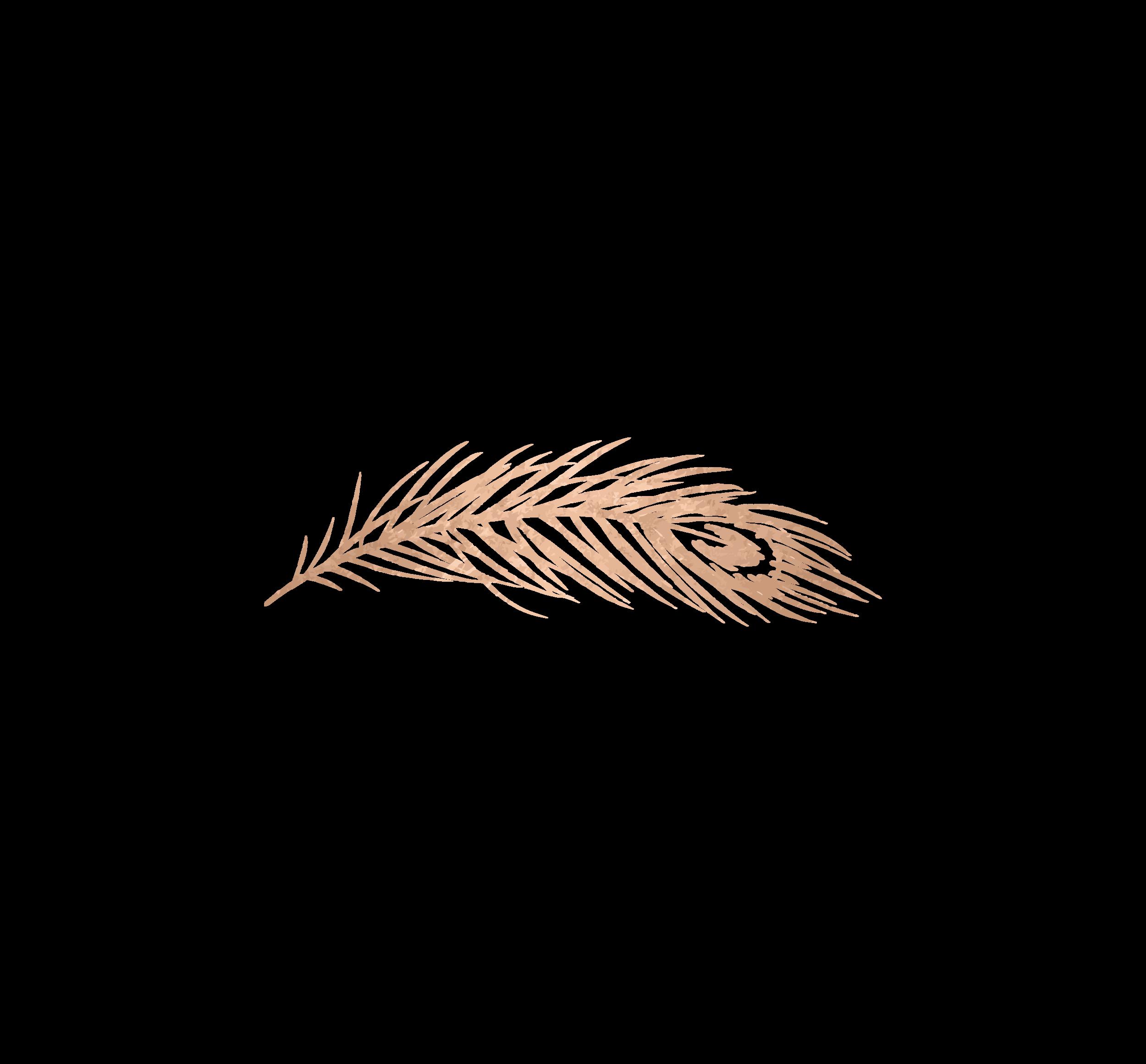 leaf-01.png