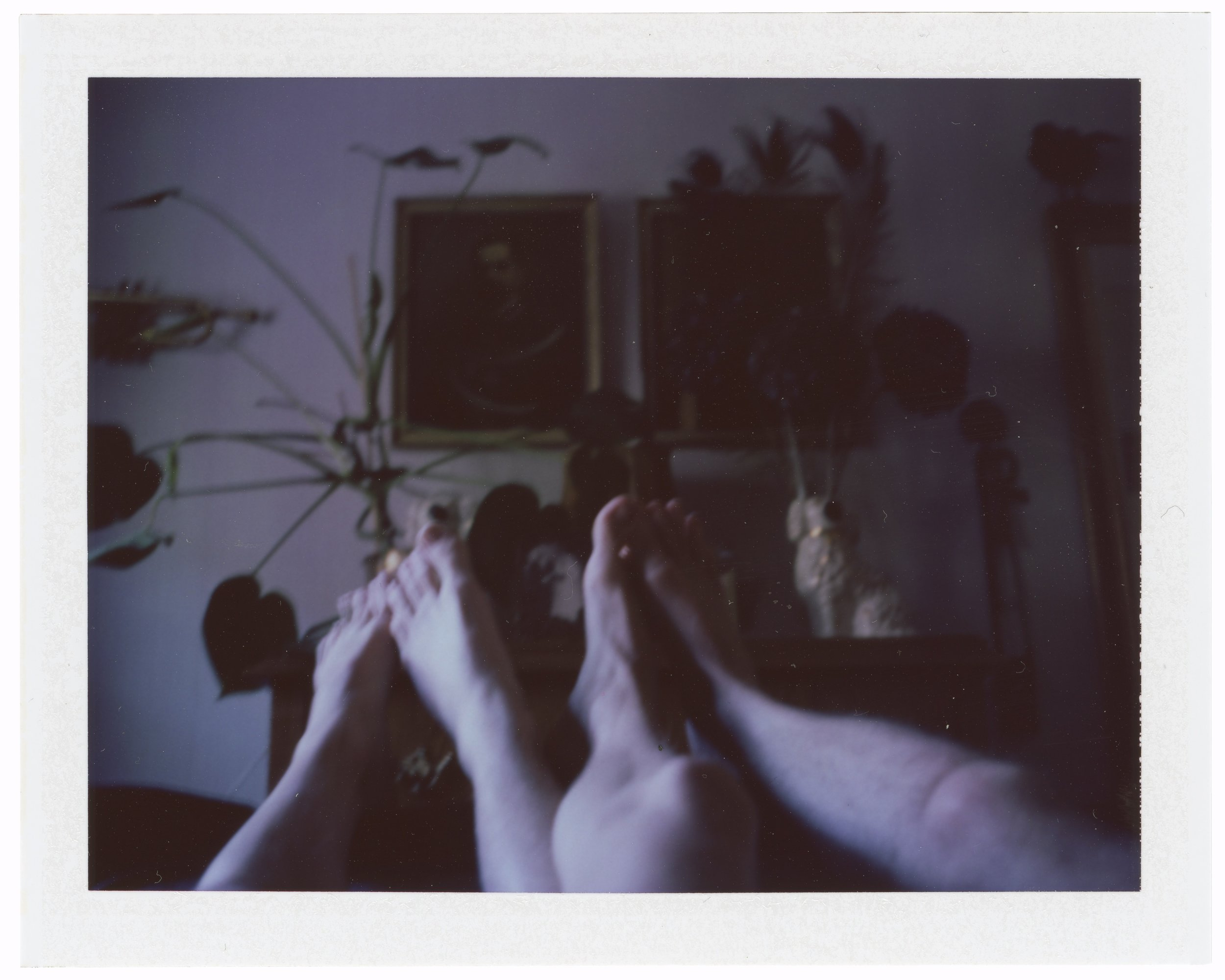 Before sunrise, January 20 2019 (Polaroid 360 Land, FP-100C)