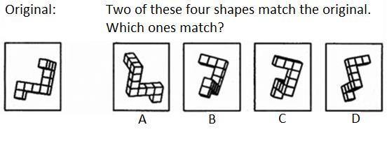spatial reasoning task.jpg