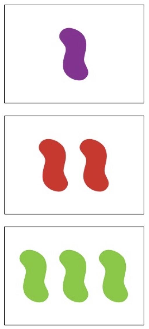 set-cards-02.jpg