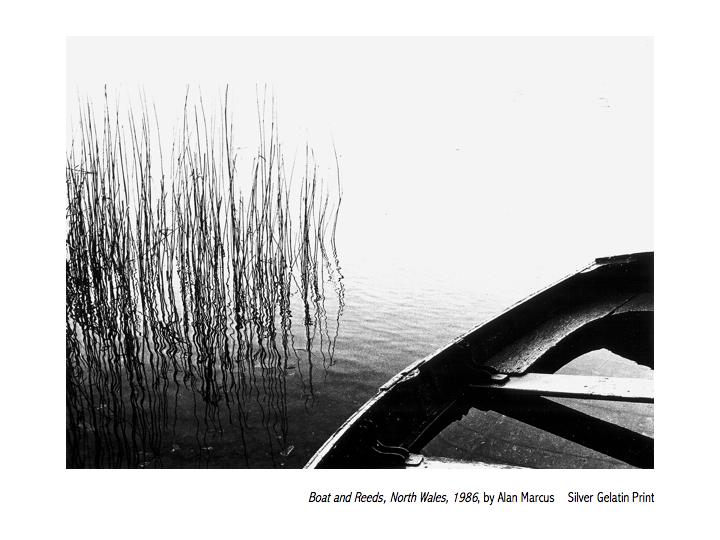 Alan Marcus  Boat and Reeds 1986,jpg.jpg
