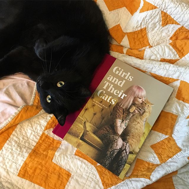 "Oh WOOOW! 😻 • • • We got our advanced copy of the new ""Girls and Their Cats"" book and we are over the moon! Thank you @briannewills for including Linus, Zorro, & me in your beautiful book @girlsandtheircats. Gorgeous portraits and I love reading everyone's cat stories! • • • Ohmygosh! What a surprise to see our picture in the table of contents too. 😹 • • • The book will be released August 20th and you can preorder it now on Amazon. 💙 Zorro is so proud! #zorroandlinus"