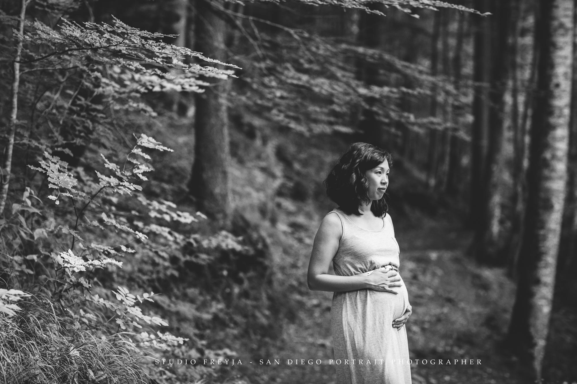 Germany Maternity Photography by San Diego Maternity Photographer Studio Freyja 5.jpg