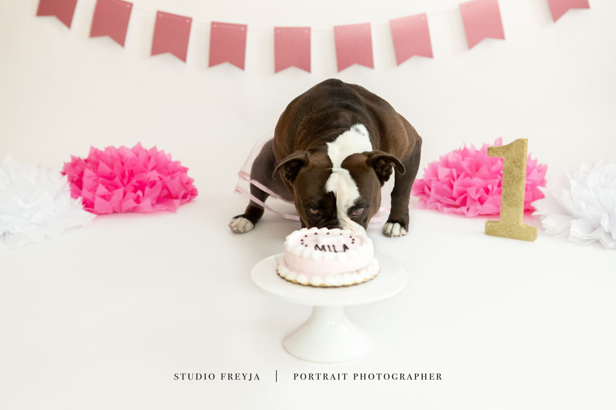 Mila One Year Cake Smash Copyright Studio Freyja (49 of 72).jpg