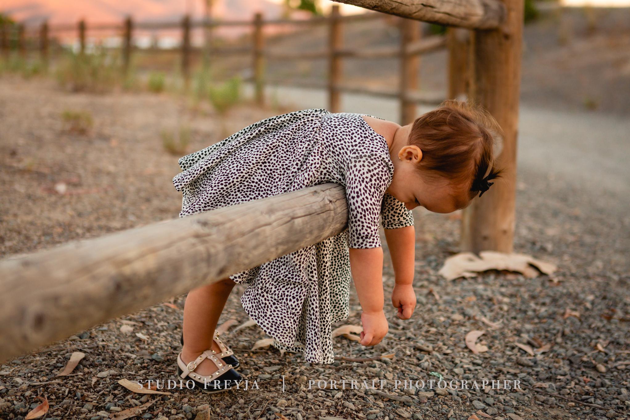 Aly Fall Family Pictures San Diego Copyright Studio Freyja (92 of 97).jpg